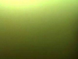 Trim.19e34eee-3948-4409-a395-e3be181630a1.mov
