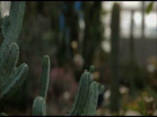 Movie22.net.a कठपुतली (2013) 2
