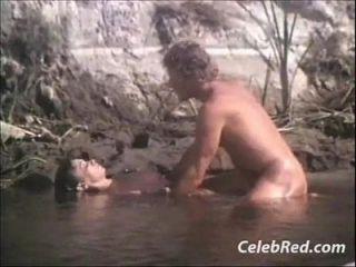 देश आराम 1981