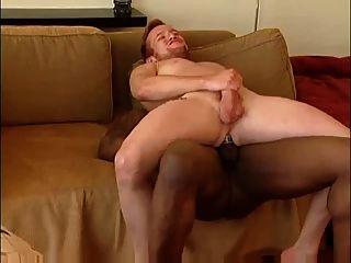 सोफे पर गर्म काले बकवास