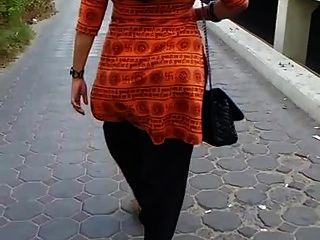 गर्म पाकिस्तानी गधा
