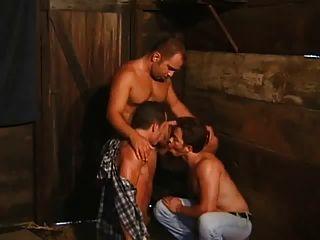 तीन गर्म किसानों कमबख्त