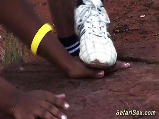 प्रकृति में अफ्रीकी सफारी सेक्स नंगा नाच
